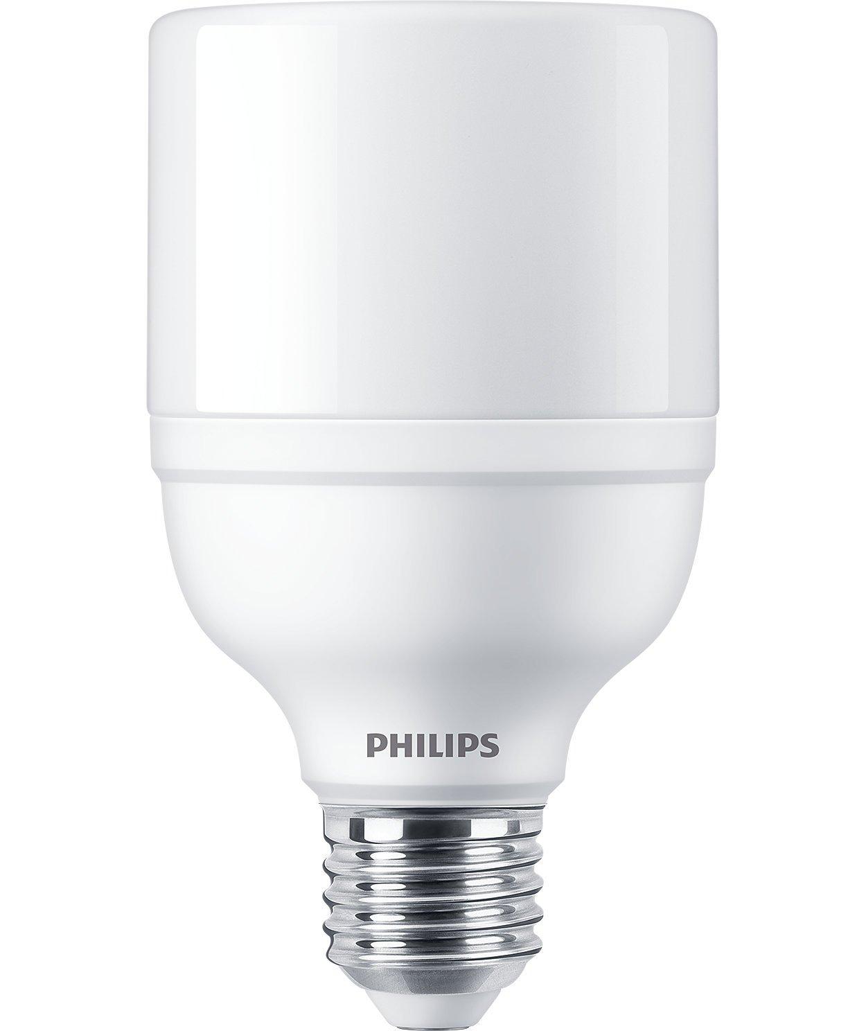 philips 17w led