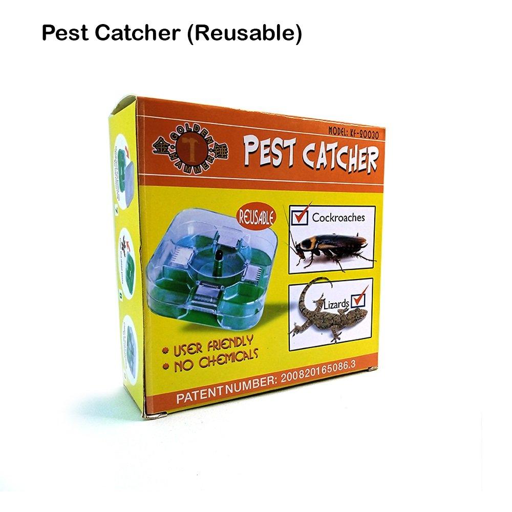 Golden Hammer Pest Catcher (Reusable)